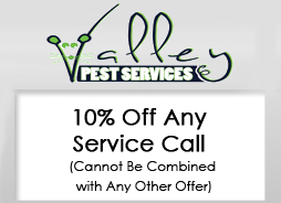 10% Off Service Call, Pest Control Services in Wayne, NJ